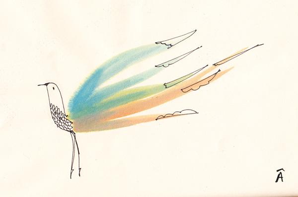 Illustration bird animals editorial magazine